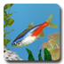 aniPet Freshwater Aquarium icon