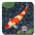 aniPet Koi icon