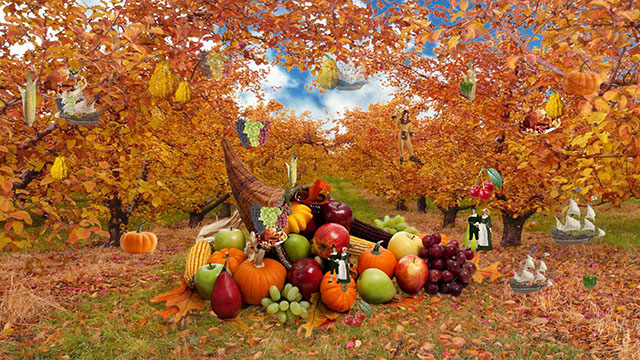 Full size screensavers thanksgiving bing images - Thanksgiving screen backgrounds ...